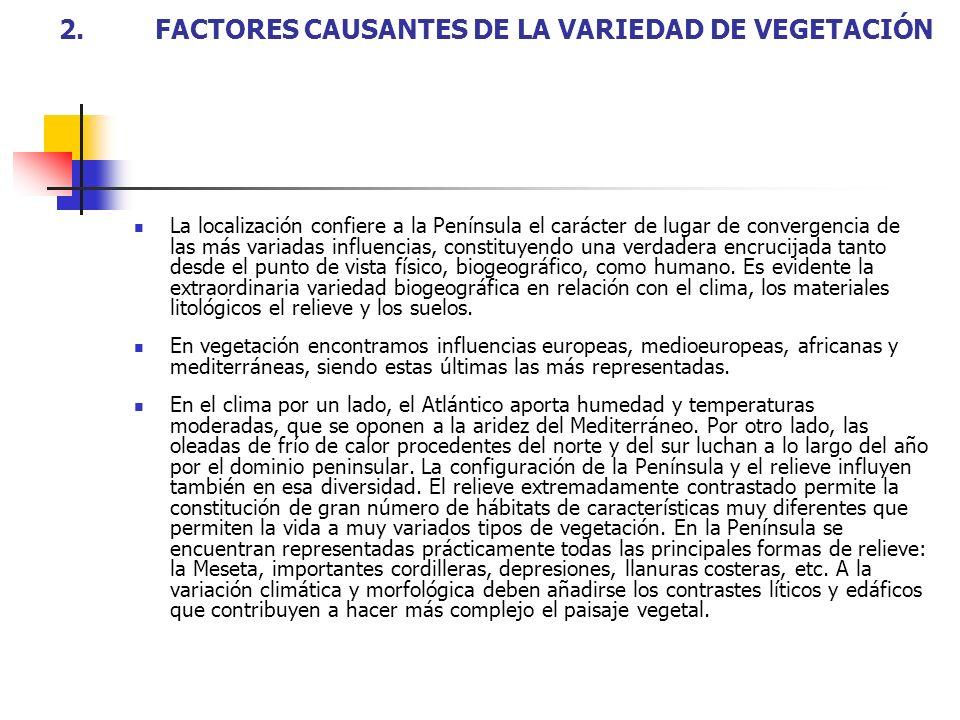 2. FACTORES CAUSANTES DE LA VARIEDAD DE VEGETACIÓN