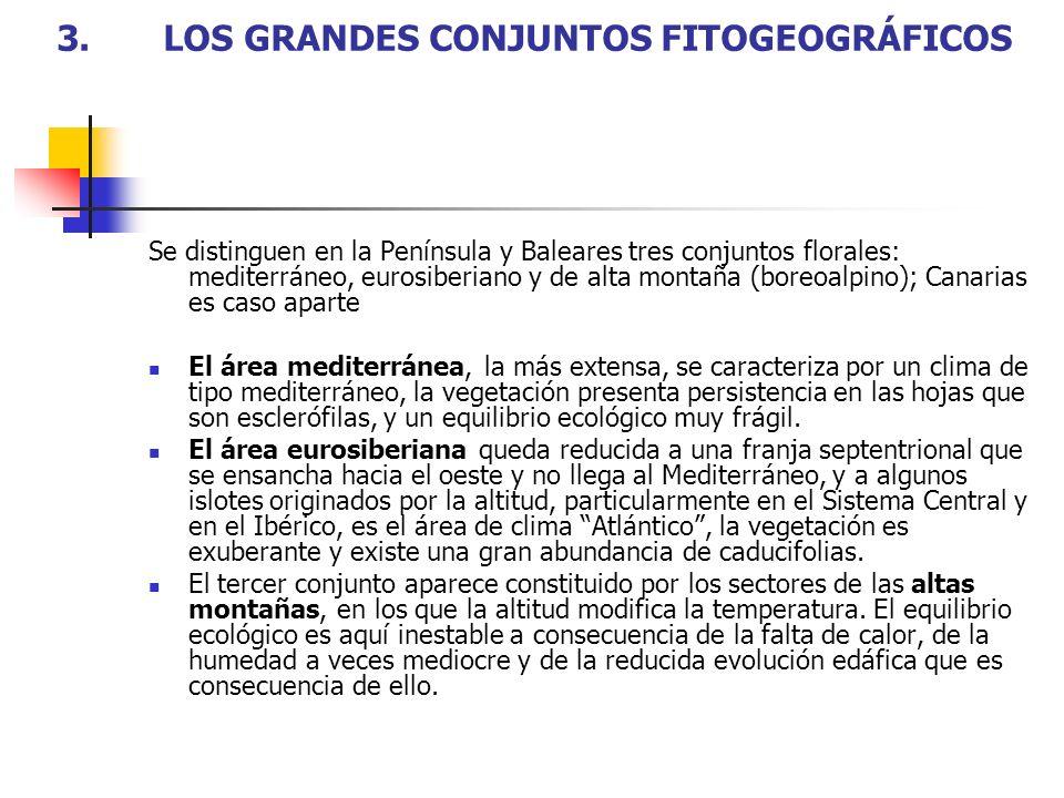 3. LOS GRANDES CONJUNTOS FITOGEOGRÁFICOS