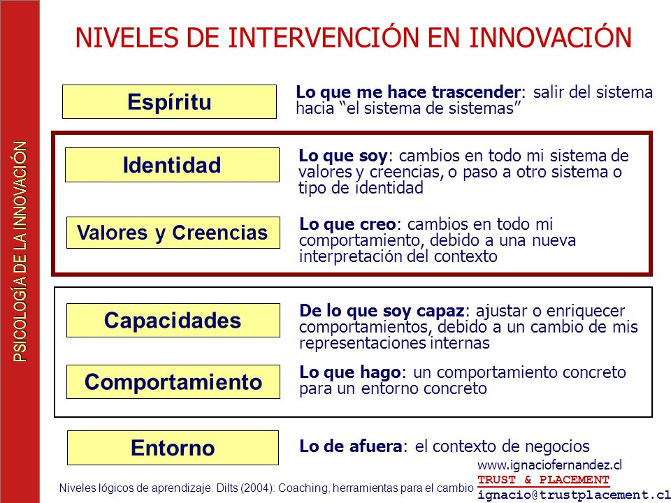 NIVELES DE INTERVENCIÓN EN INNOVACIÓN