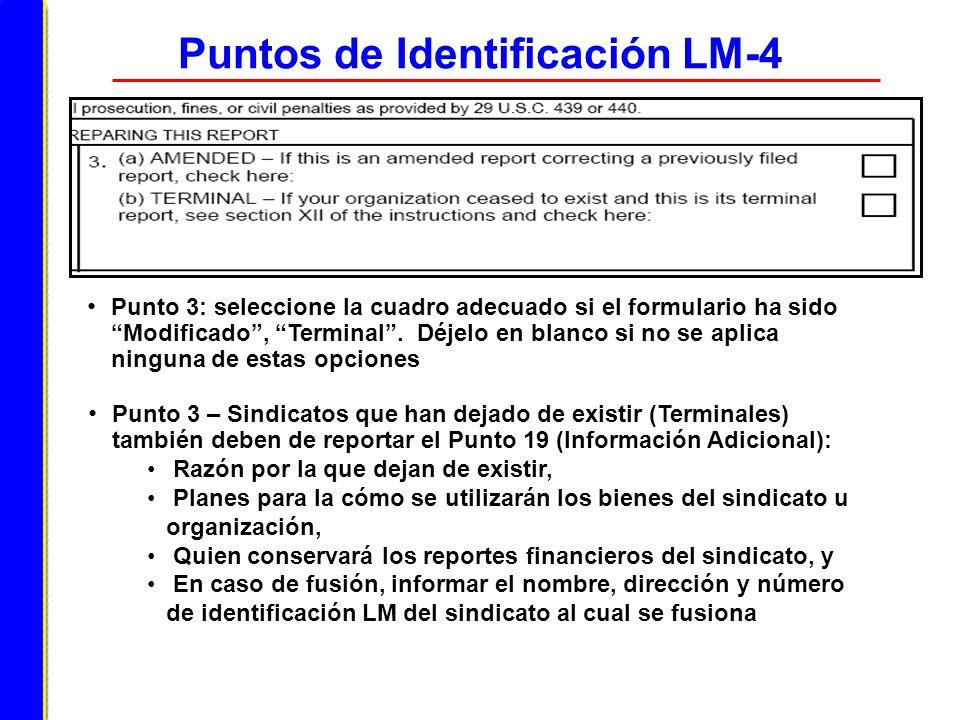 Puntos de Identificación LM-4