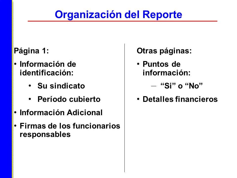 Organización del Reporte