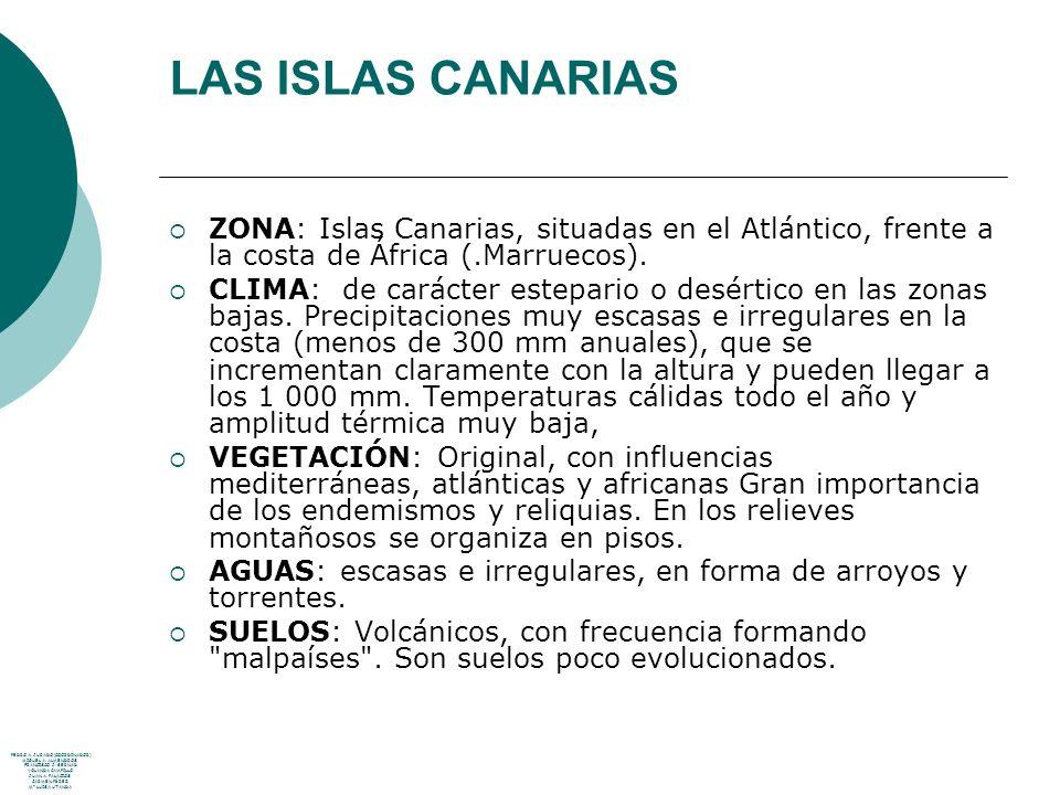 LAS ISLAS CANARIAS ZONA: Islas Canarias, situadas en el Atlántico, frente a la costa de África (.Marruecos).