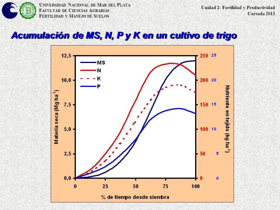 Acumulación de MS, N, P y K en un cultivo de trigo