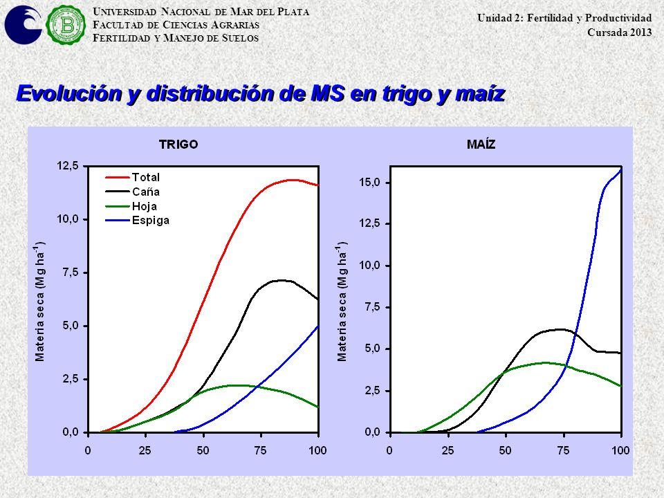 Evolución y distribución de MS en trigo y maíz