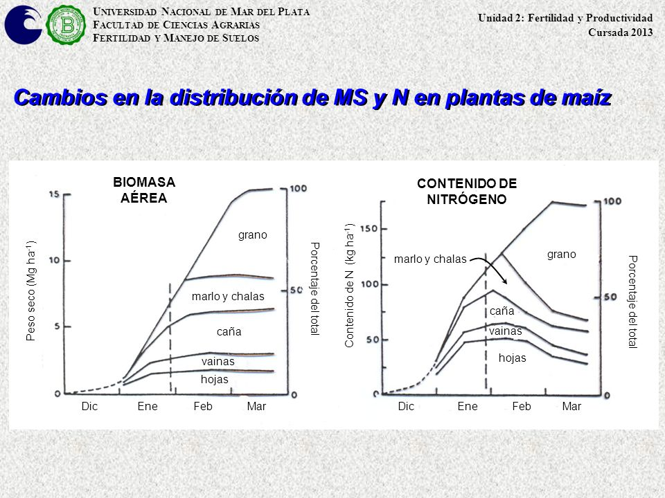 Cambios en la distribución de MS y N en plantas de maíz