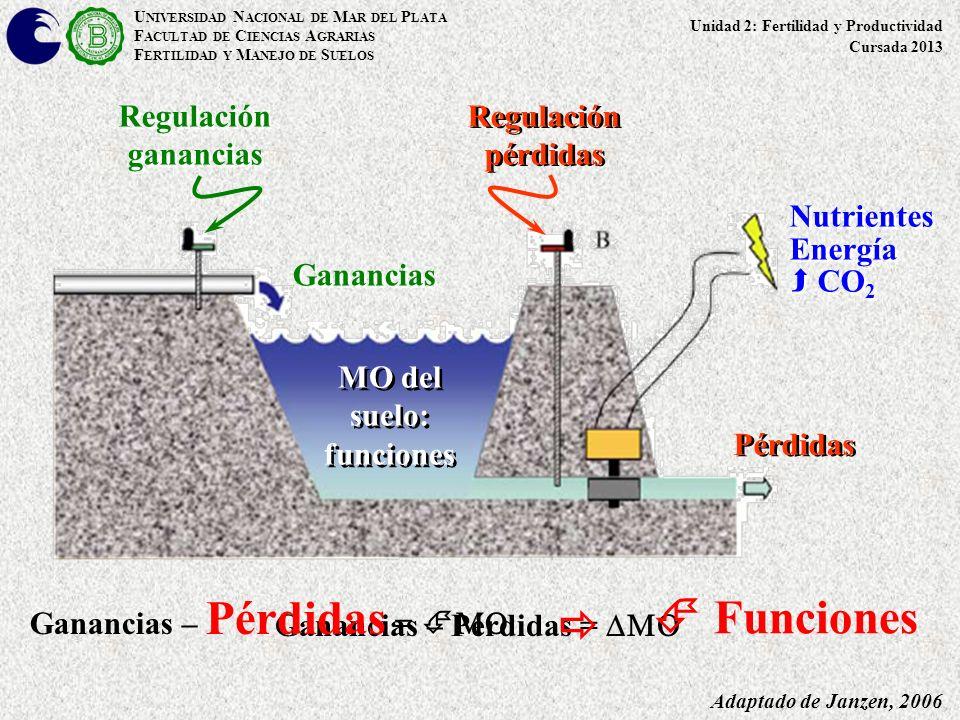  Funciones  Regulación ganancias Regulación pérdidas Nutrientes