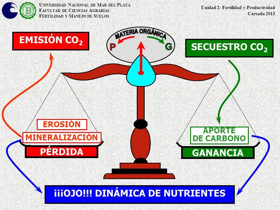 ¡¡¡OJO!!! DINÁMICA DE NUTRIENTES