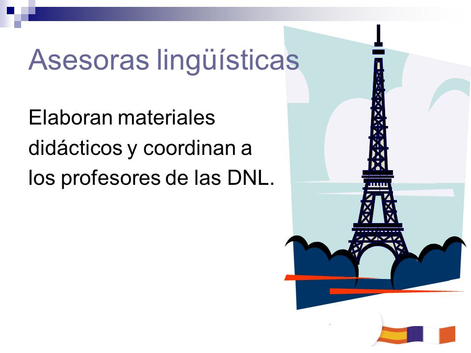 Asesoras lingüísticas