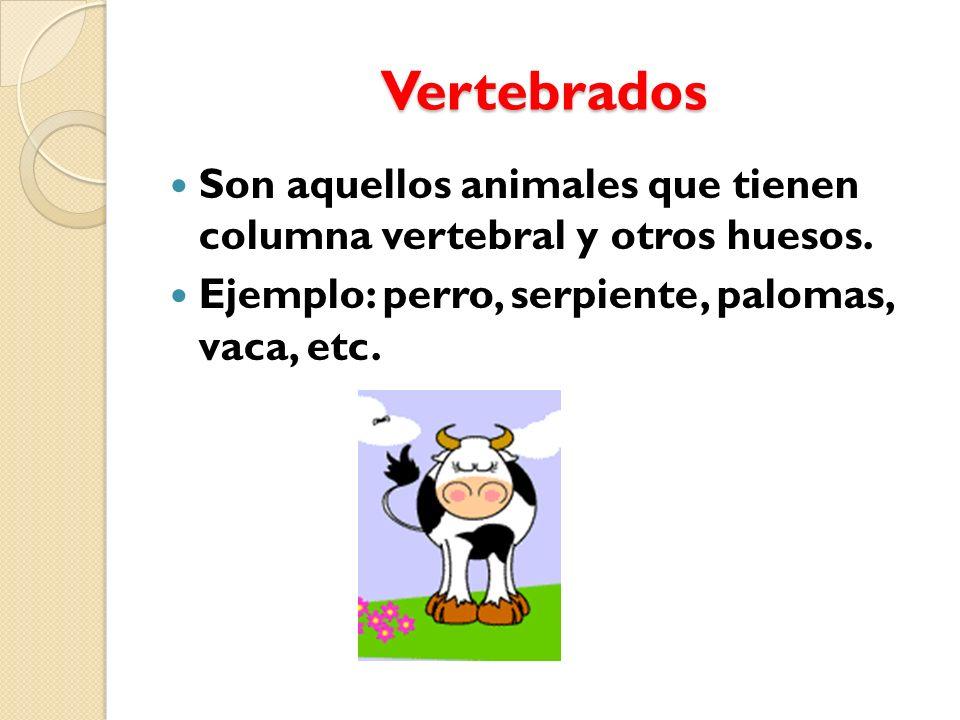 Vertebrados e invertebrados - ppt video online descargar