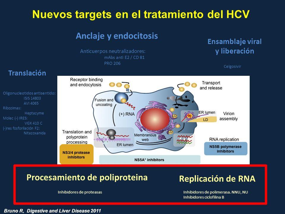 Nuevos targets en el tratamiento del HCV