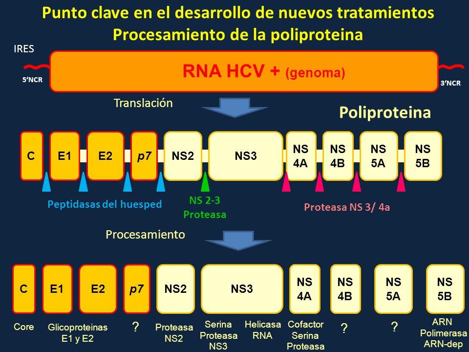 Punto clave en el desarrollo de nuevos tratamientos