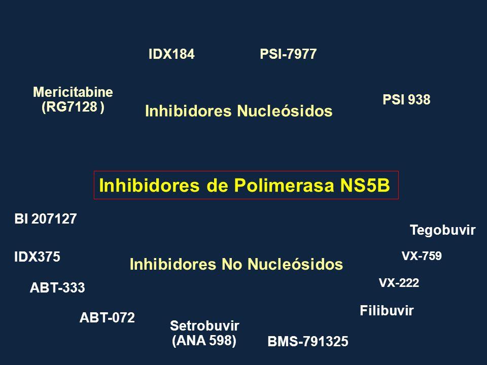 Inhibidores de Polimerasa NS5B