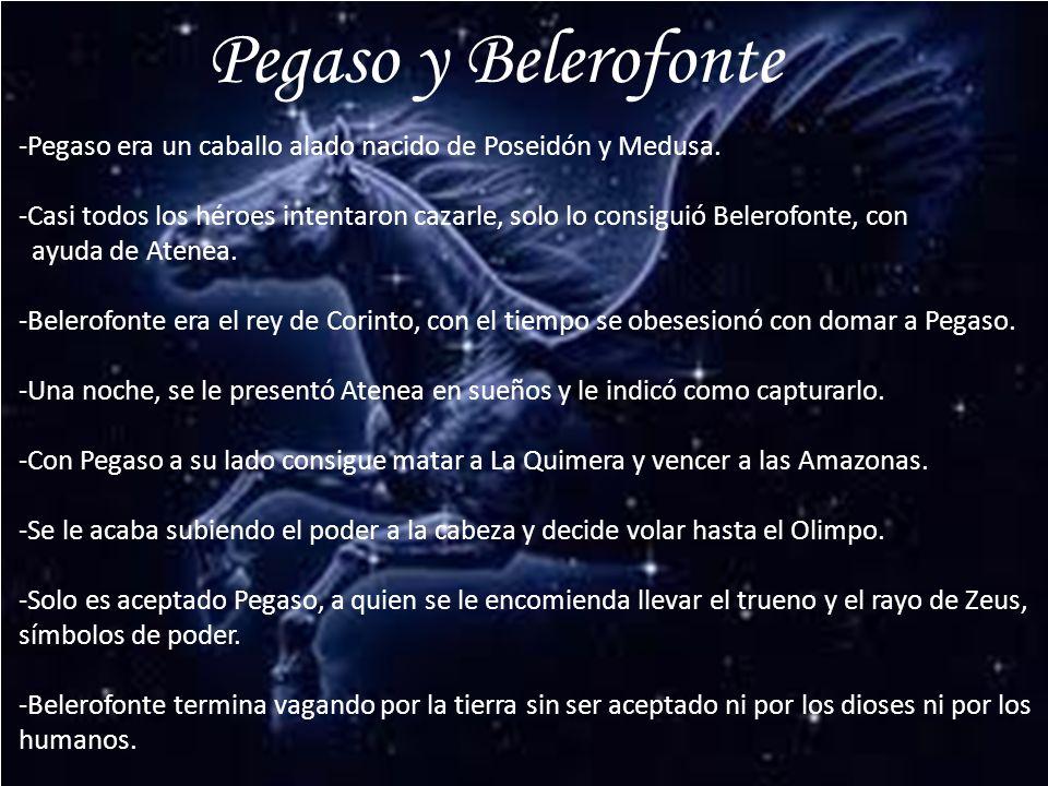 Pegaso y Belerofonte -Pegaso era un caballo alado nacido de Poseidón y Medusa.