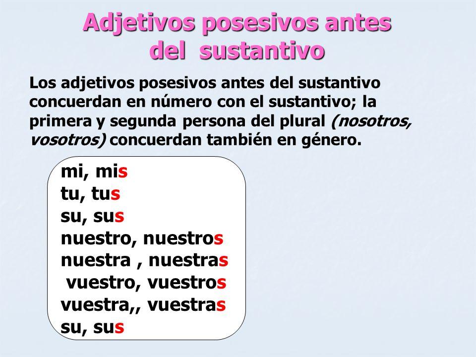 Adjetivos posesivos antes del sustantivo