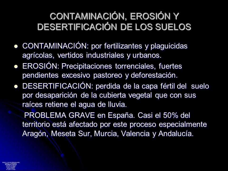 CONTAMINACIÓN, EROSIÓN Y DESERTIFICACIÓN DE LOS SUELOS