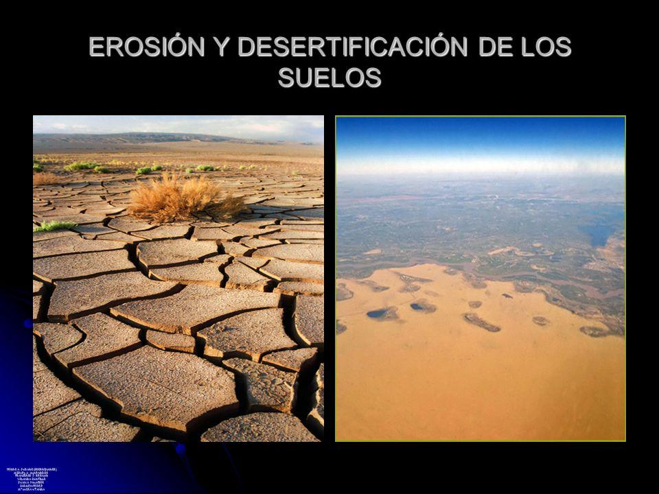 EROSIÓN Y DESERTIFICACIÓN DE LOS SUELOS