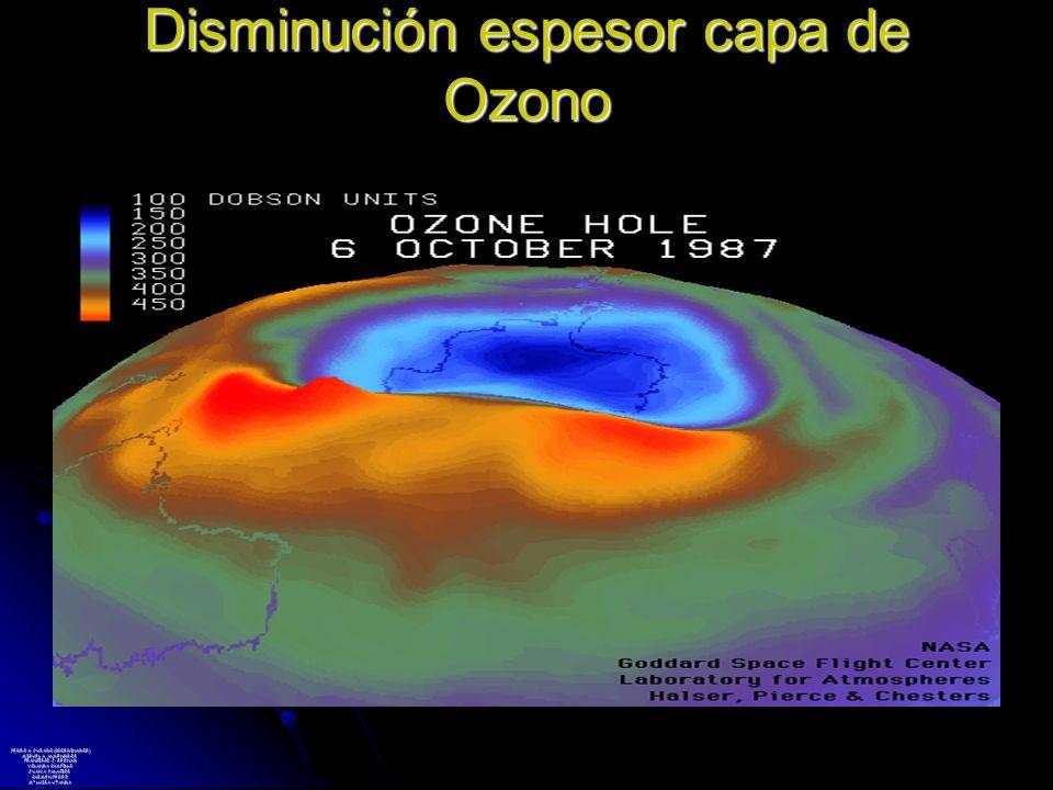 Disminución espesor capa de Ozono