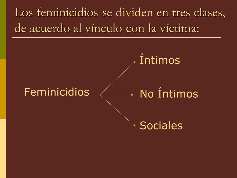 Los feminicidios se dividen en tres clases, de acuerdo al vínculo con la víctima: