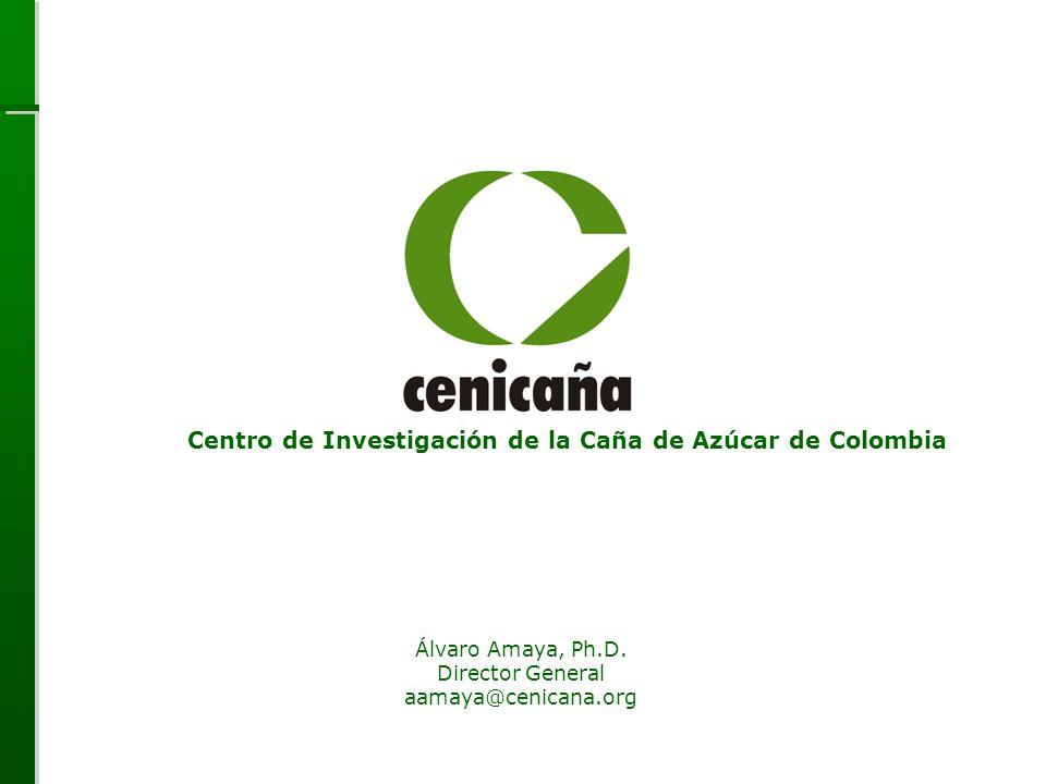 Centro de Investigación de la Caña de Azúcar de Colombia