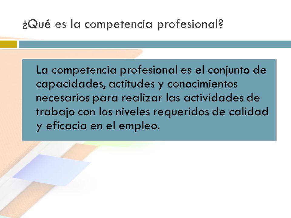 ¿Qué es la competencia profesional