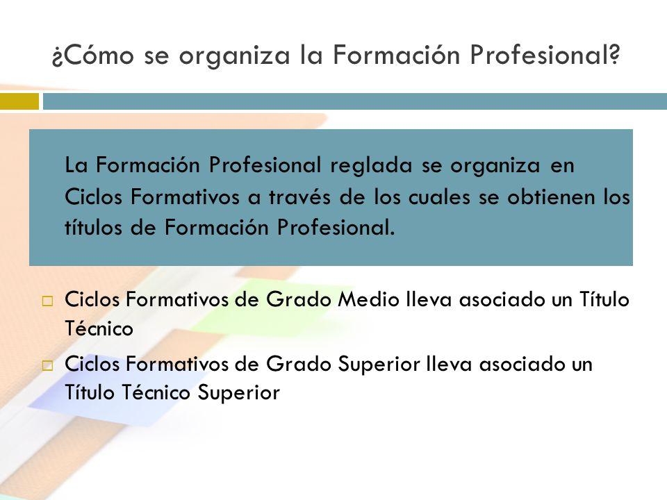 ¿Cómo se organiza la Formación Profesional