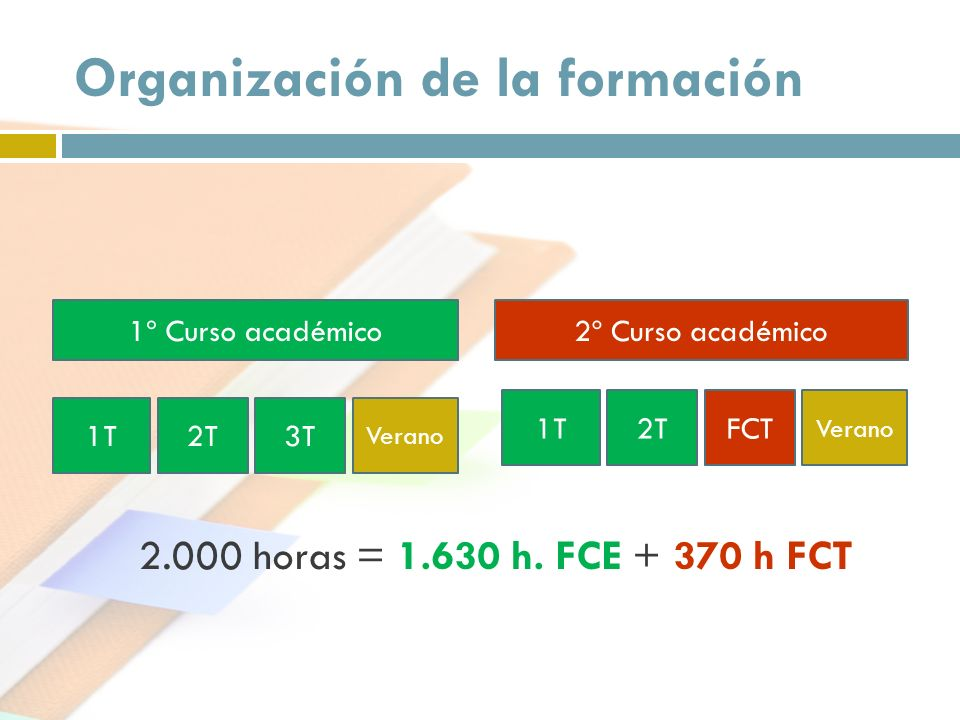 Organización de la formación