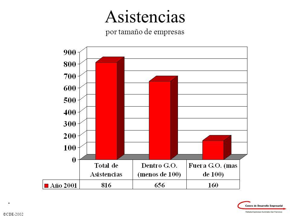 Asistencias por tamaño de empresas