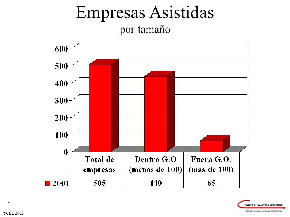 Empresas Asistidas por tamaño