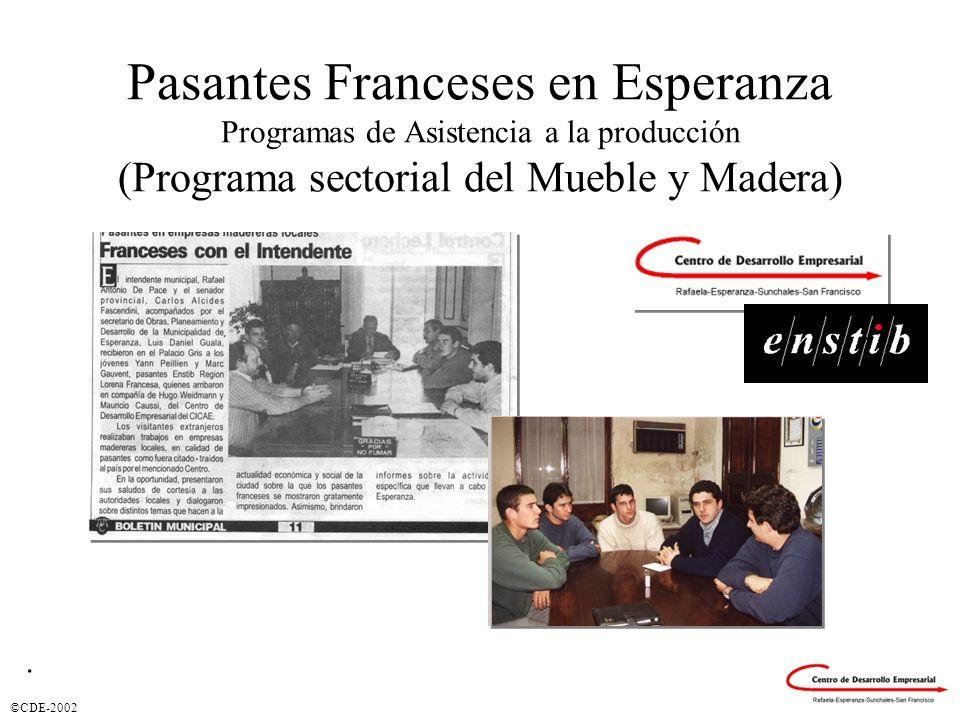 Pasantes Franceses en Esperanza Programas de Asistencia a la producción (Programa sectorial del Mueble y Madera)