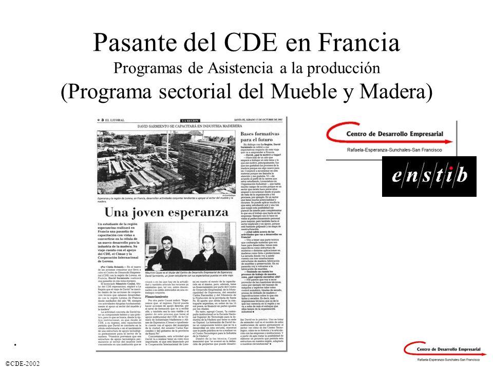 Pasante del CDE en Francia Programas de Asistencia a la producción (Programa sectorial del Mueble y Madera)