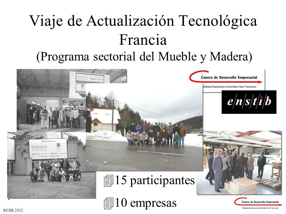 Viaje de Actualización Tecnológica Francia (Programa sectorial del Mueble y Madera)