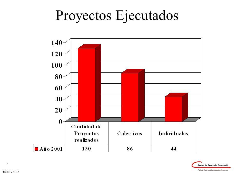 Proyectos Ejecutados .