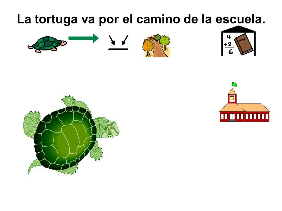 La tortuga va por el camino de la escuela.