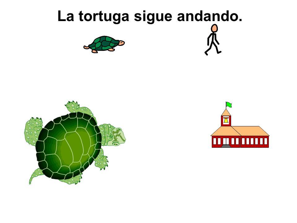 La tortuga sigue andando.