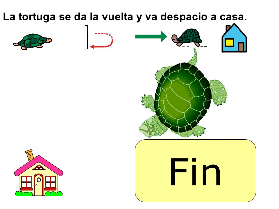 La tortuga se da la vuelta y va despacio a casa.