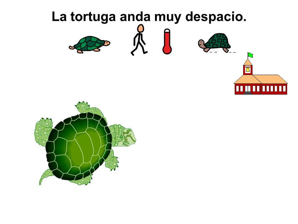 La tortuga anda muy despacio.