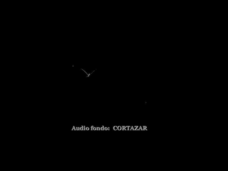 Audio fondo: CORTAZAR