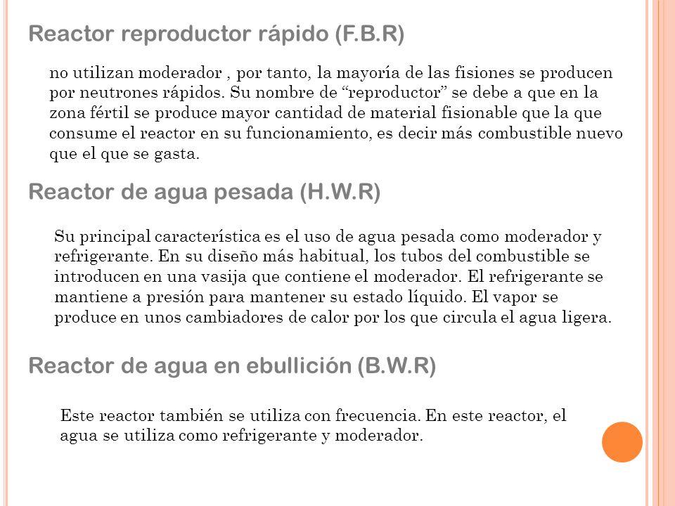 Reactor reproductor rápido (F.B.R)