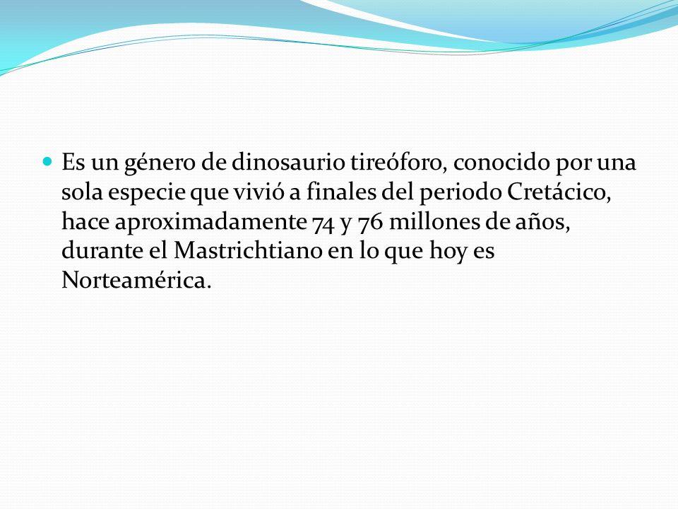 Es un género de dinosaurio tireóforo, conocido por una sola especie que vivió a finales del periodo Cretácico, hace aproximadamente 74 y 76 millones de años, durante el Mastrichtiano en lo que hoy es Norteamérica.
