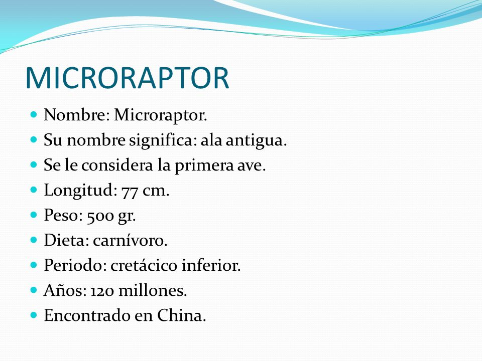 MICRORAPTOR Nombre: Microraptor. Su nombre significa: ala antigua.