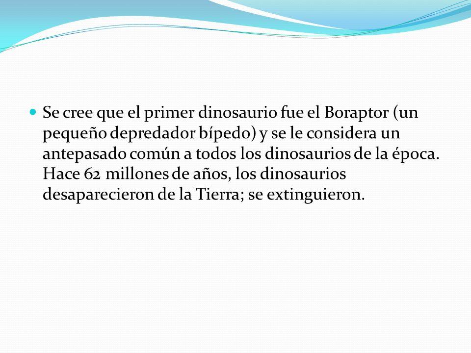 Se cree que el primer dinosaurio fue el Boraptor (un pequeño depredador bípedo) y se le considera un antepasado común a todos los dinosaurios de la época.