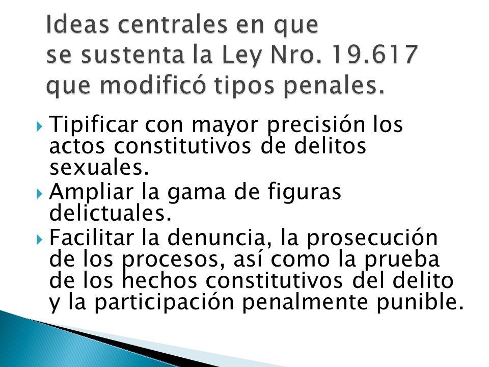 Ideas centrales en que se sustenta la Ley Nro. 19