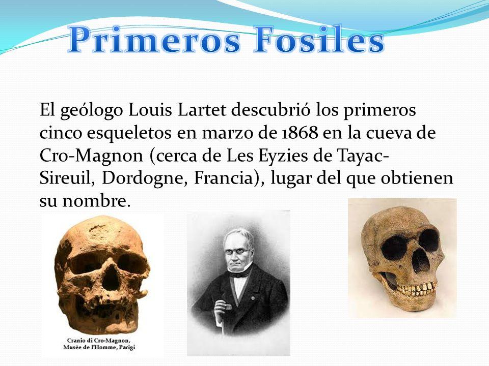 Primeros Fosiles