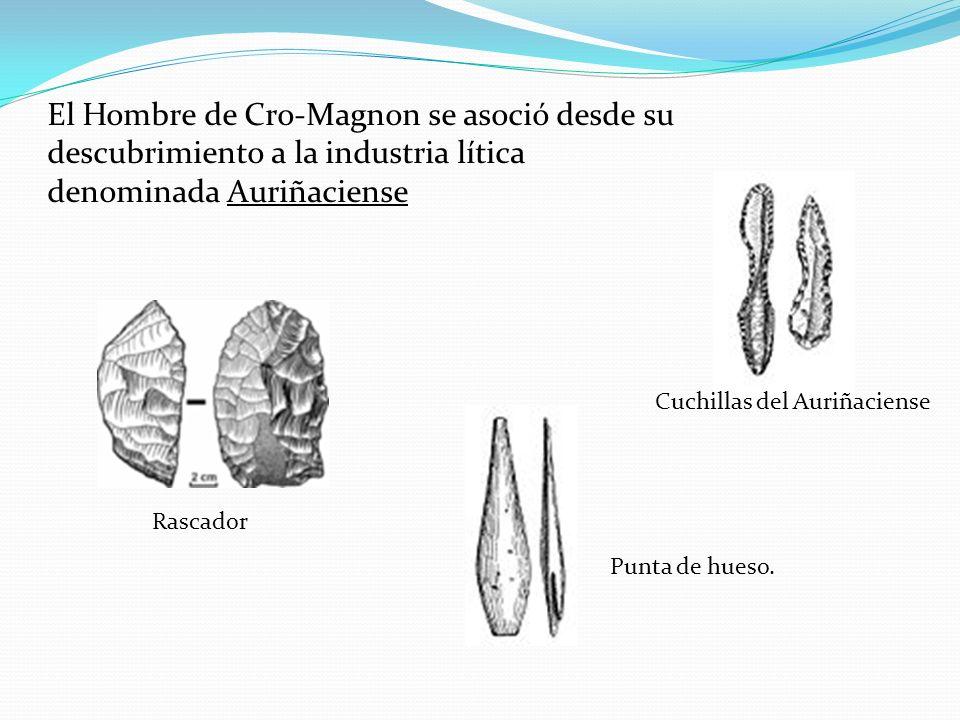 El Hombre de Cro-Magnon se asoció desde su descubrimiento a la industria lítica denominada Auriñaciense