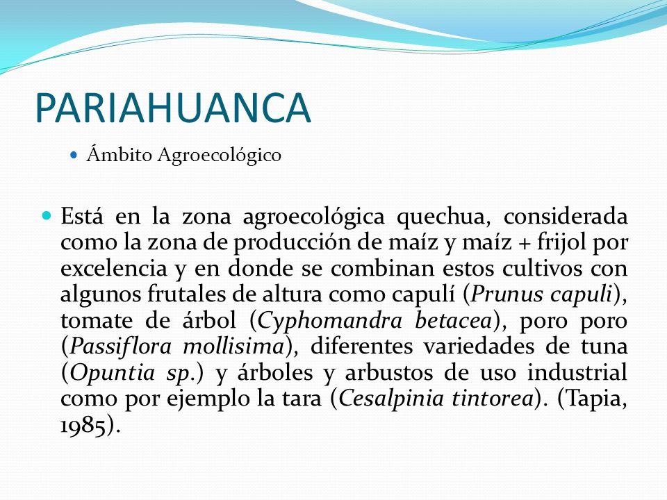 PARIAHUANCA Ámbito Agroecológico.