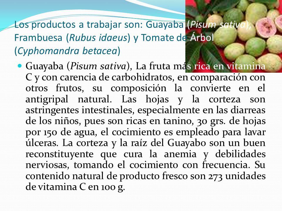 Los productos a trabajar son: Guayaba (Pisum sativa), Frambuesa (Rubus idaeus) y Tomate de Árbol (Cyphomandra betacea)