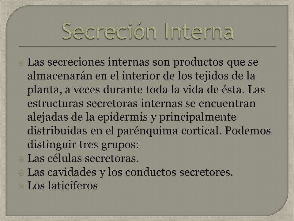 Secreción Interna