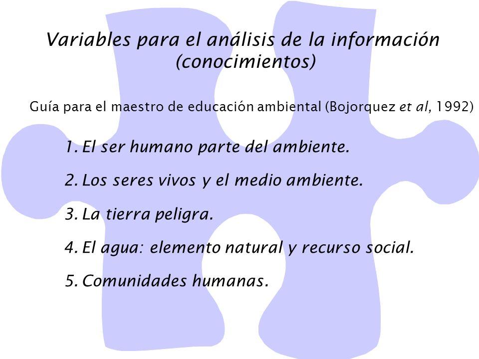 Variables para el análisis de la información