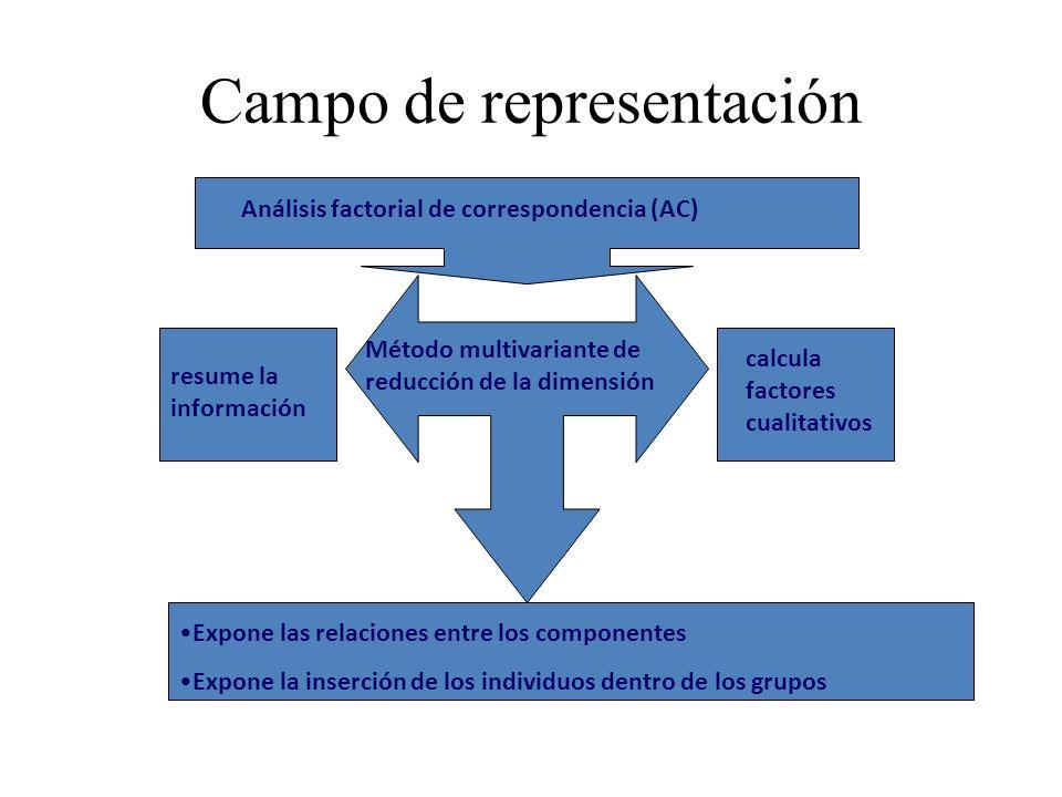 Campo de representación