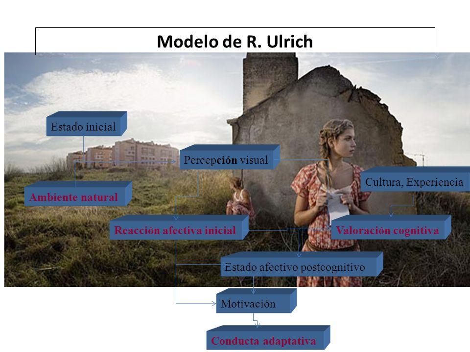 Modelo de R. Ulrich Estado inicial Percepción visual
